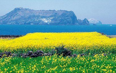 2010 Jeju Island, Korea Annual Meeting